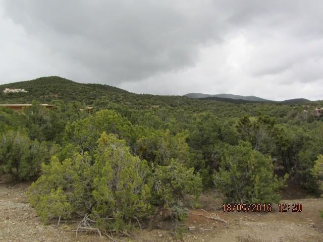 Pinon Trail, Taos, NM 87571 (MLS #98321) :: Page Sullivan Group