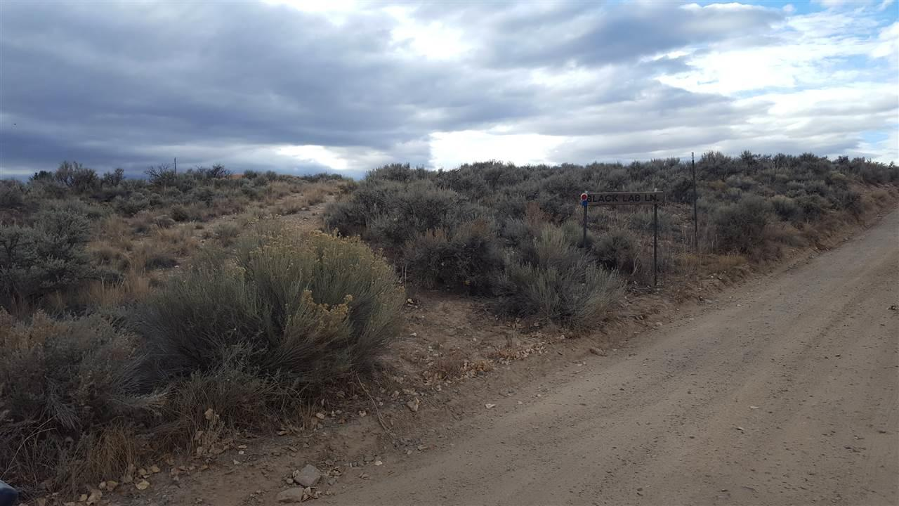 Blacklab Road At Milicent Rogers - Photo 1
