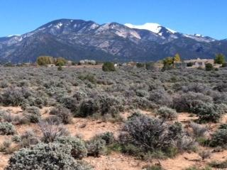 13 Cavalry Camp Road, Arroyo Seco, NM 87514 (MLS #99367) :: The Chisum Realty Group
