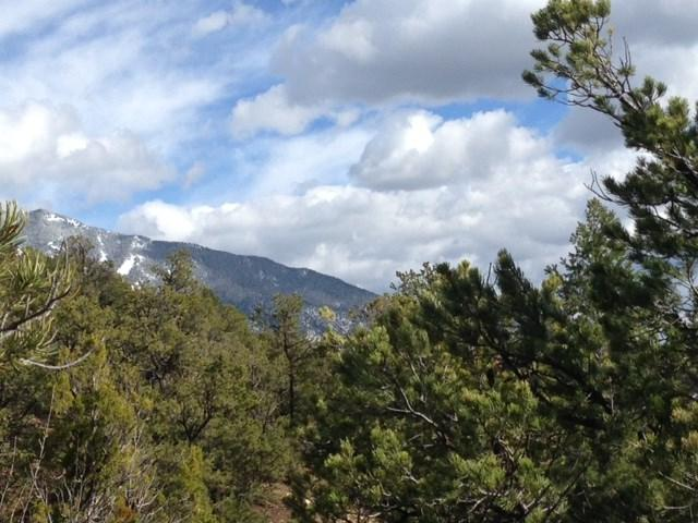 off Canada Del Agua, Valdez, NM 87580 (MLS #99672) :: Page Sullivan Group | Coldwell Banker Lota Realty