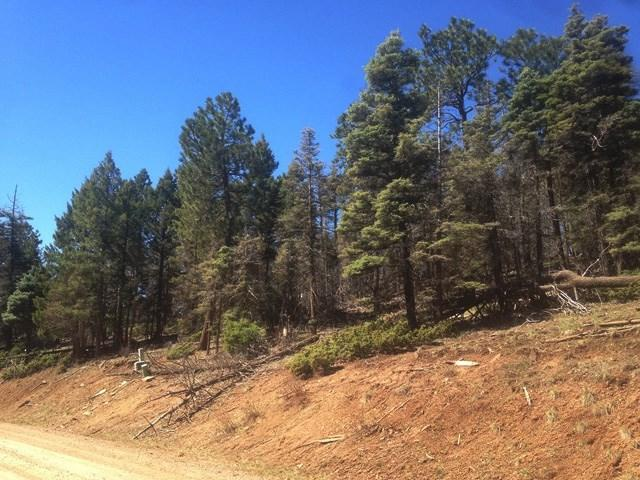 352 S Vail Ave, Angel Fire, NM 87710 (MLS #99873) :: Page Sullivan Group | Coldwell Banker Lota Realty