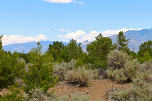 Weimer Road, Taos, NM 87571 (MLS #100206) :: Page Sullivan Group | Coldwell Banker Lota Realty