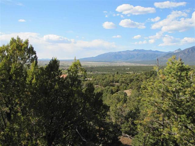 Lot 3B Bluebird Lane, Taos, NM 87571 (MLS #102874) :: Angel Fire Real Estate & Land Co.