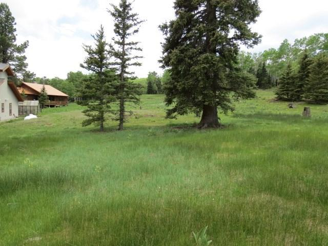 Lot 1178 Colonial Trail, Angel Fire, NM 87710 (MLS #103070) :: Angel Fire Real Estate & Land Co.