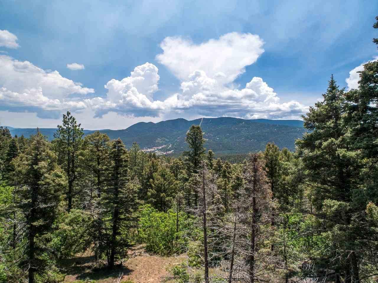 Sierra Blanca Lot 3 - Photo 1