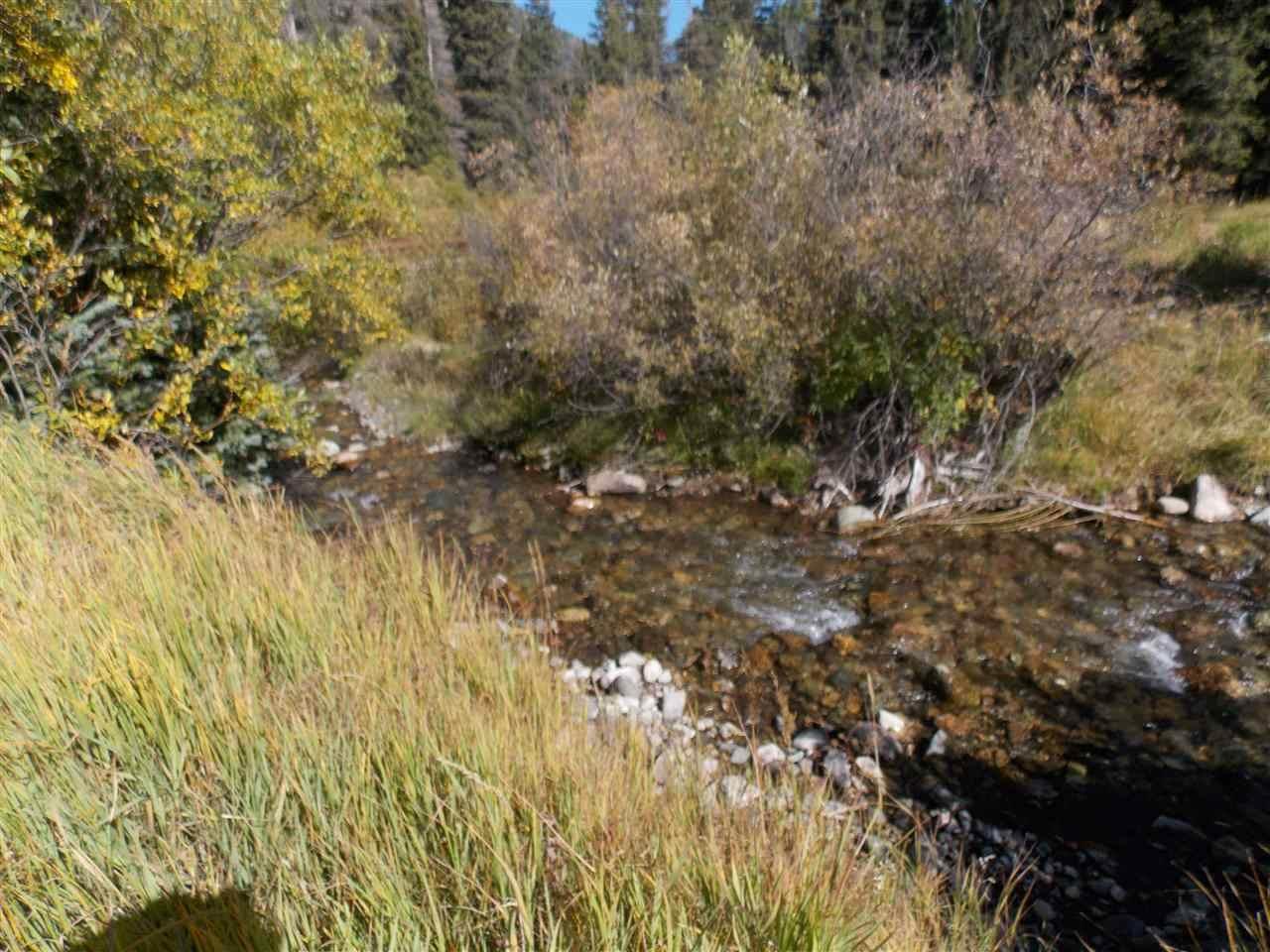 4 Beaver Road - Photo 1