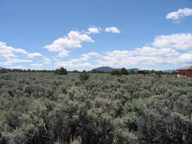 Jaracito Road Tr1b, Questa, NM 87556 (MLS #104677) :: The Chisum Realty Group