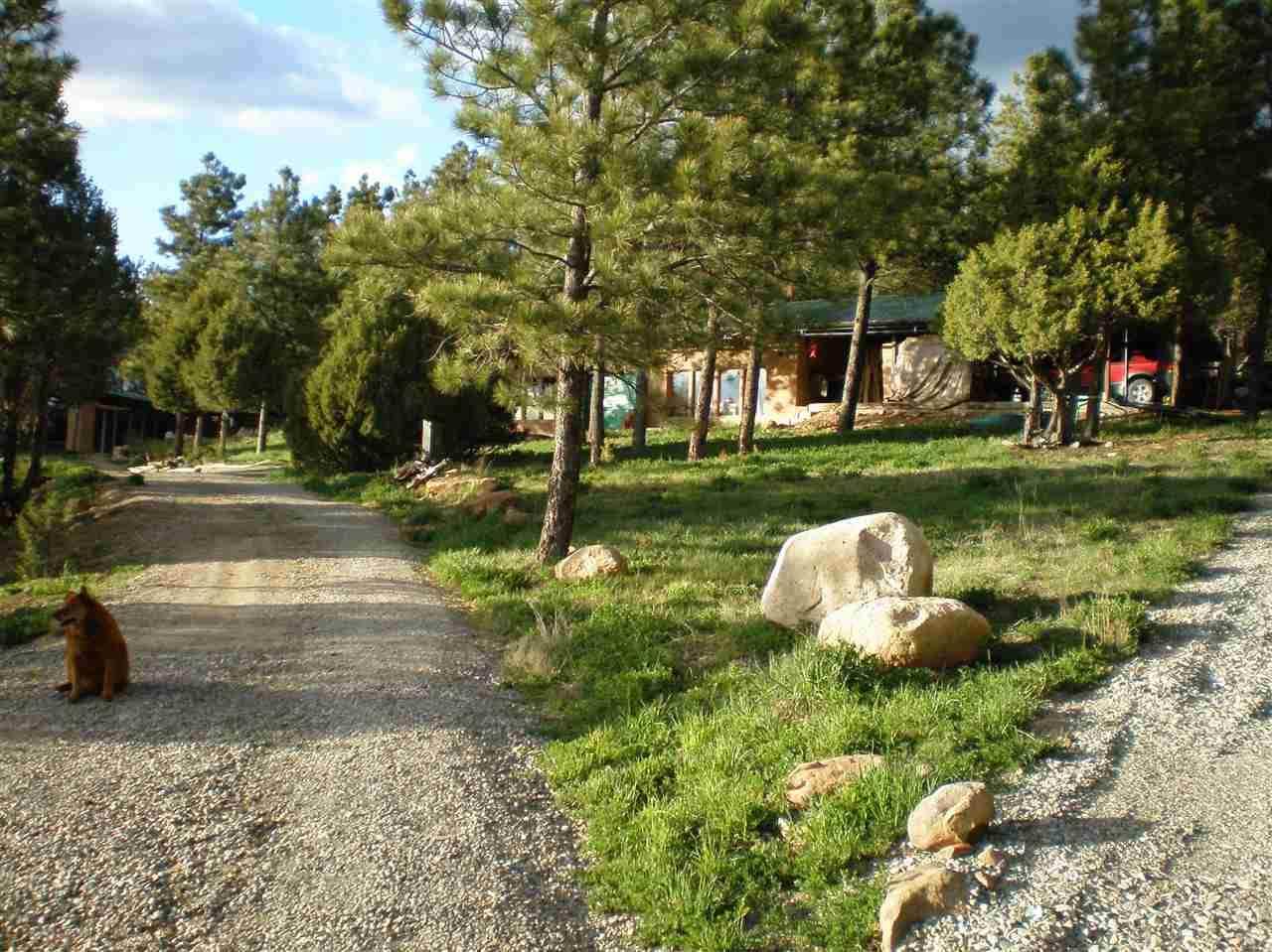 138 Llano De La Llegua Rd - Photo 1