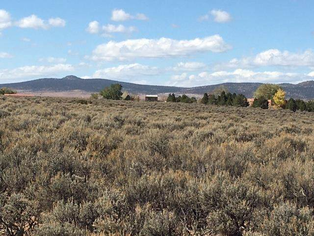 Tr A Rabbit Ridge Rd, Arroyo Hondo, NM 87513 (MLS #107923) :: Angel Fire Real Estate & Land Co.