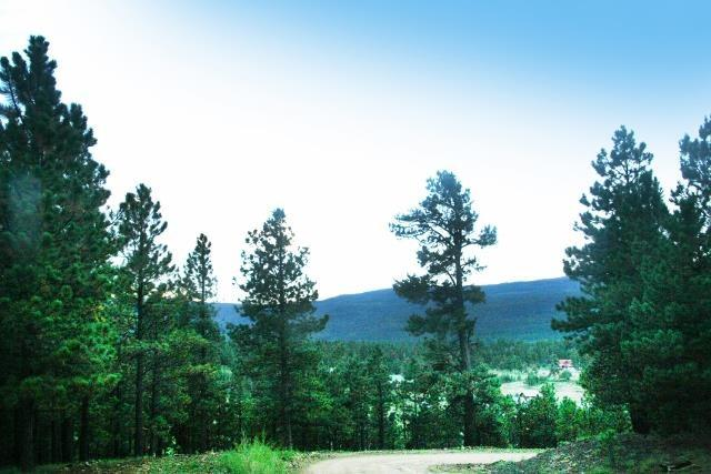 Lot 21 Lower Road, Angel Fire, NM 87710 (MLS #94059) :: Page Sullivan Group | Coldwell Banker Lota Realty