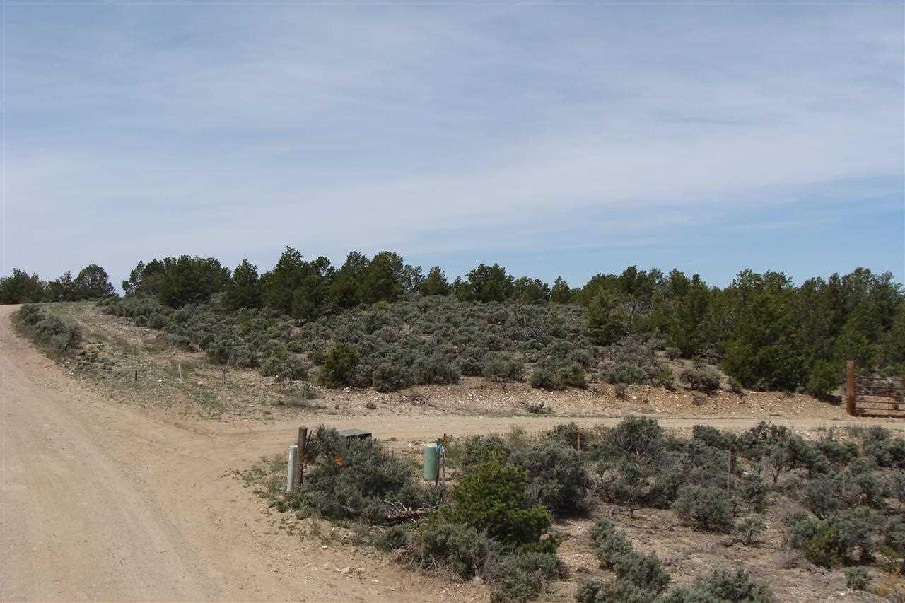 tract A-2 Tres Lomas Road - Photo 1