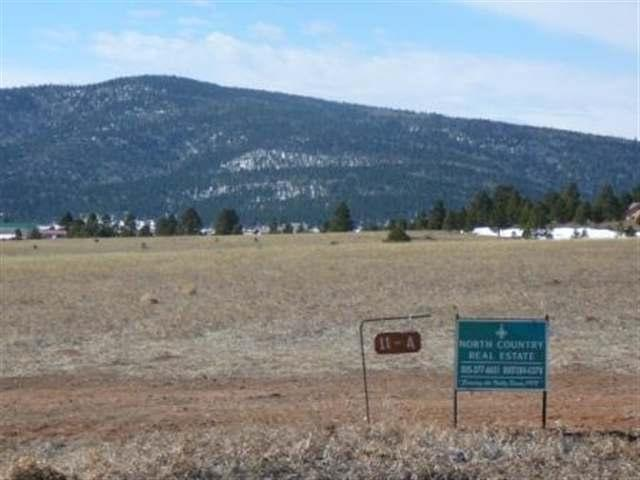 Lot 11A Bluestream Subdivision, Angel Fire, NM 87710 (MLS #95877) :: Chisum Realty Group