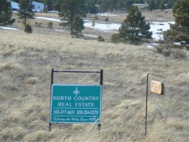 Lot 16A Bluestream Subdivision, Angel Fire, NM 87710 (MLS #95887) :: Chisum Realty Group