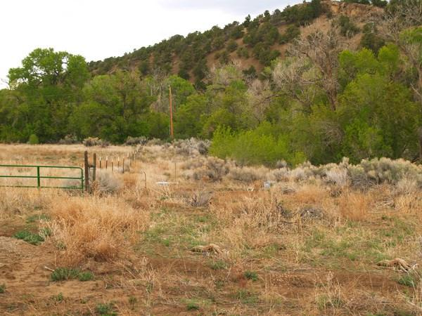 Witts End Road, Taos, NM 87571 (MLS #97538) :: Page Sullivan Group | Coldwell Banker Mountain Properties