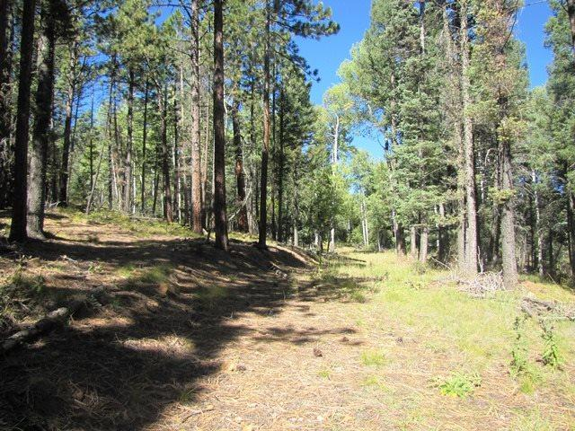 Lot 22 Taos Pines Ranch Road, Angel Fire, NM 87710 (MLS #98387) :: Page Sullivan Group | Coldwell Banker Lota Realty