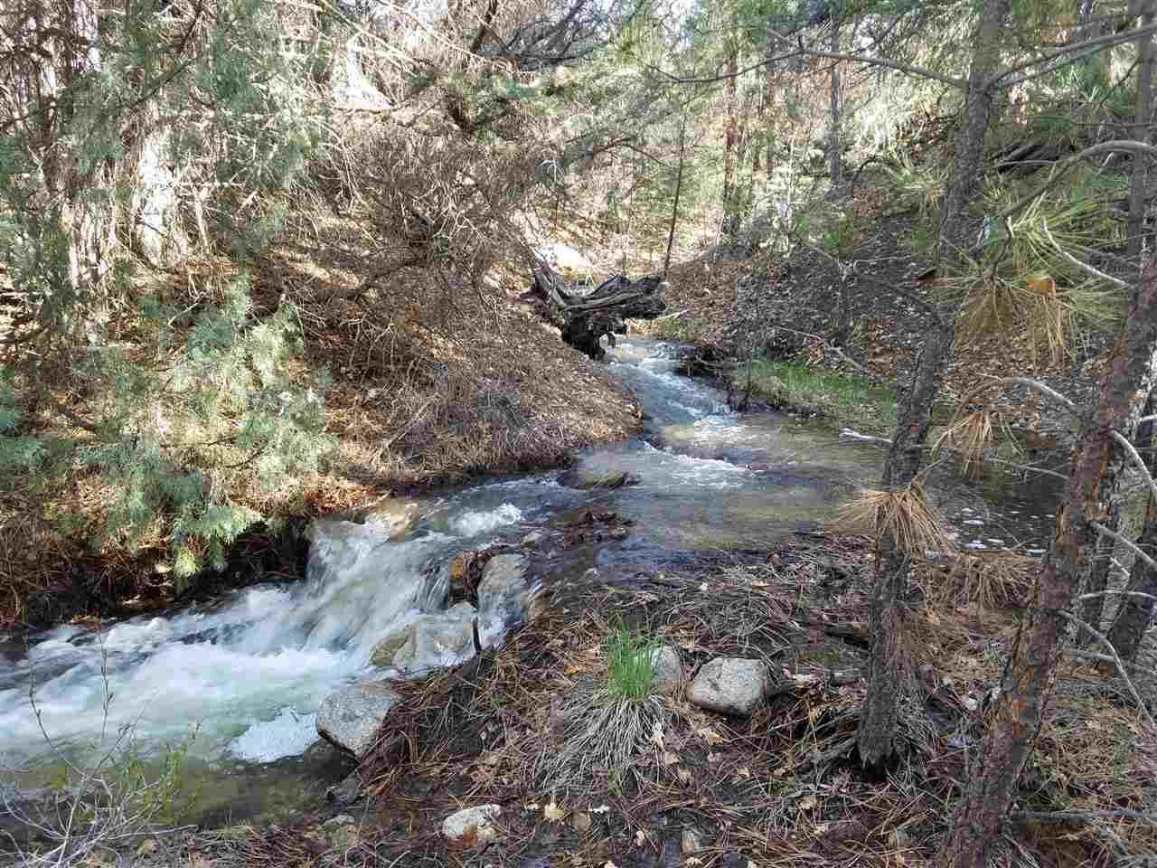266 Gallina Canyon Road - Photo 1