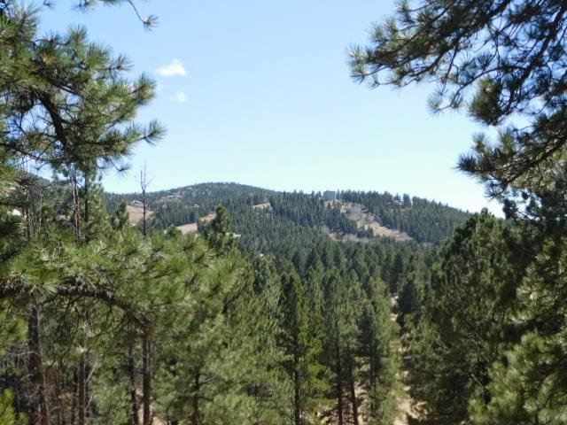 Alta Road Lot 8, Block B, Af IV, Angel Fire, NM 87710 (MLS #85689) :: Page Sullivan Group | Coldwell Banker Lota Realty