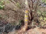 0 Camino Vista - Photo 3