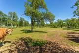 6768 Millville Plains Rd. - Photo 3
