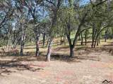 16667 Stagecoach Road - Photo 9