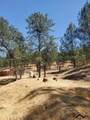 16597 Stagecoach Road - Photo 14
