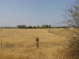 Lot 2 Middletree Ranch - Photo 4