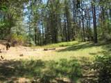 5641 Woodcutters Way - Photo 59