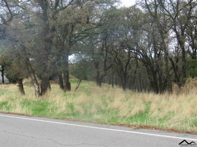 0000 Wilcox Road, Red Bluff, CA 96080 (#20171315) :: Wise House Realty