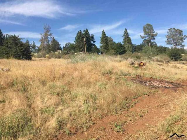 33730 Vanguard Avenue, Paynes Creek, CA 96075 (#20181236) :: Josh Barker Real Estate Advisors
