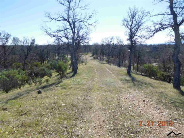17125 Quail Ridge Road, Cottonwood, CA 96022 (#20190243) :: Josh Barker Real Estate Advisors