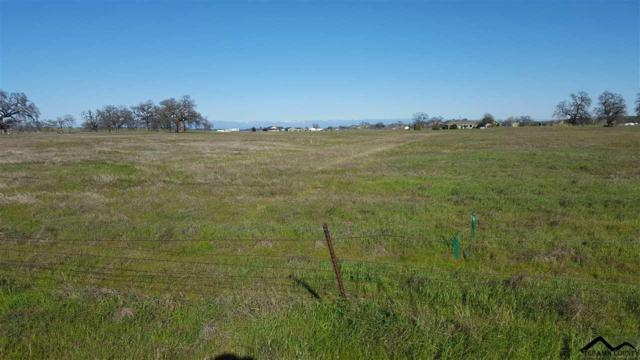 000 Osborn Road, Flournoy, CA 96029 (#20190323) :: Wise House Realty