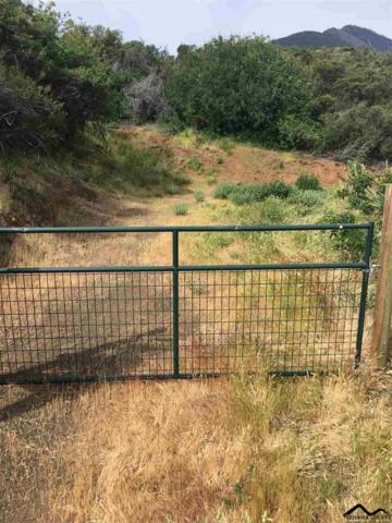 Hammer Loop Road, Red Bluff, CA 96080 (#20190433) :: Wise House Realty