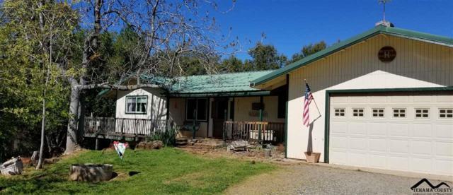 30700 Manton Road, Manton, CA 96059 (#20190490) :: Josh Barker Real Estate Advisors
