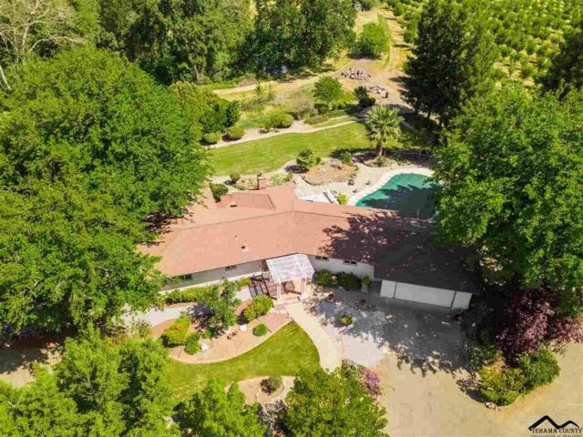 24710 Kauffman Avenue, Red Bluff, CA 96080 (#20190588) :: Josh Barker Real Estate Advisors