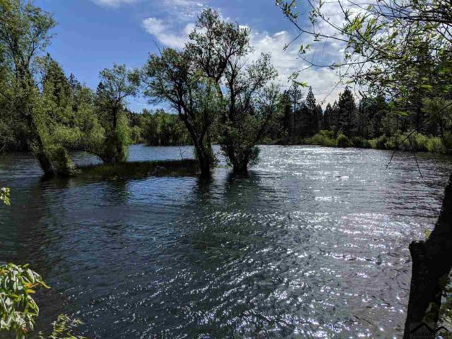 33851 Ponderosa Way (Sky Ranch), Paynes Creek, CA 96075 (#20190748) :: Josh Barker Real Estate Advisors
