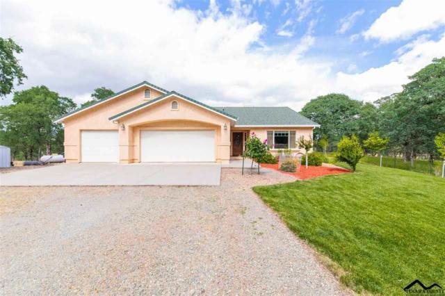 16970 Oak Hollow Drive, Cottonwood, CA 96022 (#20190799) :: Josh Barker Real Estate Advisors