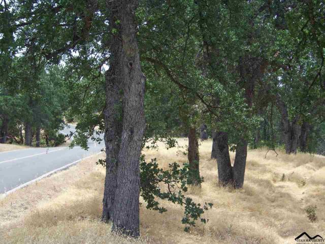 16598 Lariat Loop, Corning, CA 96021 (#20190842) :: Josh Barker Real Estate Advisors