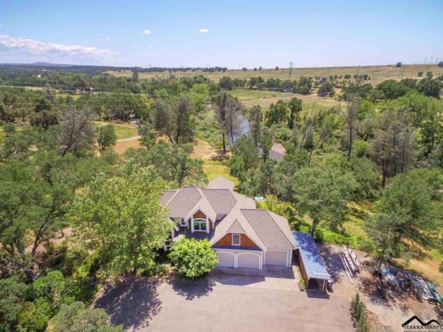 23795 Deer Canyon Road, MILLVILLE, CA 96062 (#20190853) :: Josh Barker Real Estate Advisors