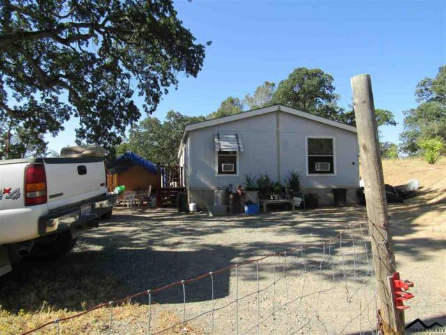 16063 Quarter Horse Court, Corning, CA 96021 (#20190900) :: Josh Barker Real Estate Advisors