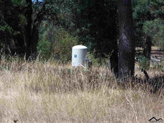 16587 Stagecoach Drive, Corning, CA 96021 (#20190936) :: Josh Barker Real Estate Advisors