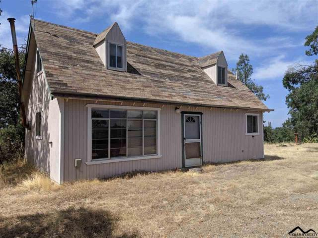 16715 Blue Oak Road, Cottonwood, CA 96022 (#20190998) :: Josh Barker Real Estate Advisors