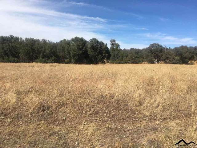 Lot C9 Dar Lane, Red Bluff, CA 96080 (#20191115) :: Wise House Realty