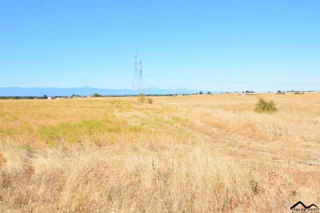 11465 Wilder Road, Red Bluff, CA 96080 (#20191159) :: Wise House Realty