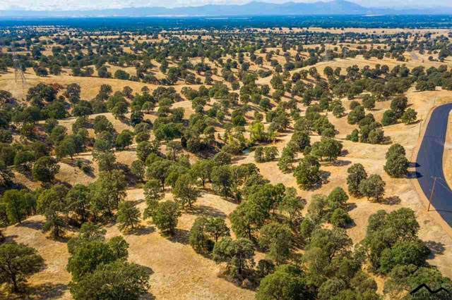 Lot 77 River Downs Way, Cottonwood, CA 96022 (#20191183) :: Josh Barker Real Estate Advisors