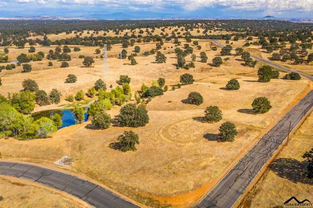 Lot 73 Arlington Park Place, Cottonwood, CA 96022 (#20191185) :: Josh Barker Real Estate Advisors