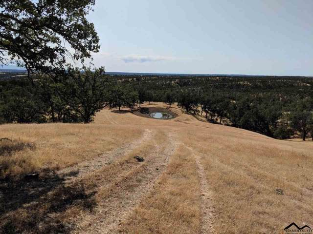 000 Highway 36 West, Red Bluff, CA 96080 (#20191271) :: Wise House Realty