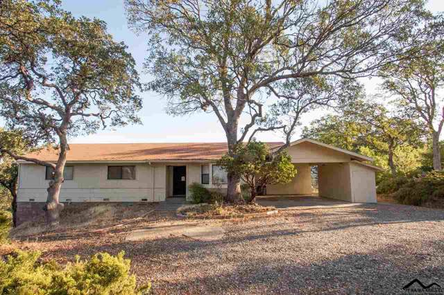 22360 Lariat Lane, Red Bluff, CA 96080 (#20191298) :: Wise House Realty