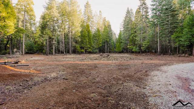 0 Emigrant Trail, Shingletown, CA 96088 (#20191399) :: Wise House Realty