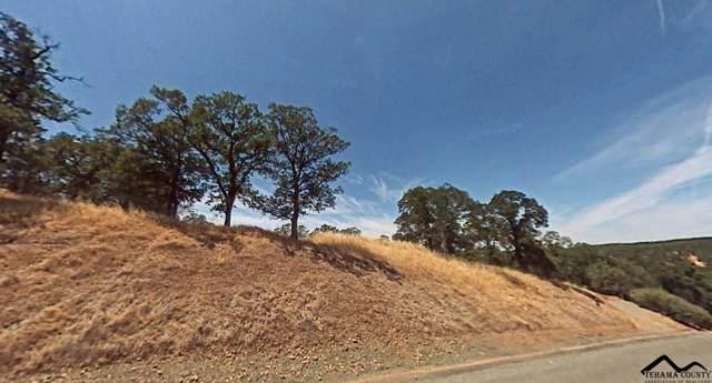 21300 Meadowgate Drive, Red Bluff, CA 96080 (#20191450) :: Josh Barker Real Estate Advisors