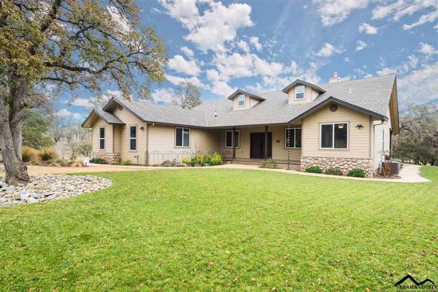 21645 Wood Duck Pass, Red Bluff, CA 96080 (#20191458) :: Wise House Realty